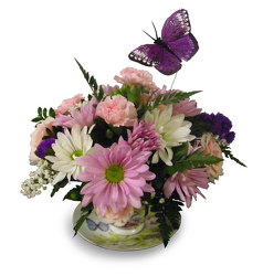 Afternoons and Butterflies from Ladybug's Flowers & Gifts, local florist in Tulsa