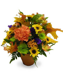 Autumn Whisper from Ladybug's Flowers & Gifts, local florist in Tulsa