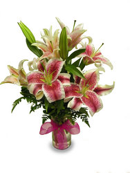 Lavish Lilies from Ladybug's Flowers & Gifts, local florist in Tulsa
