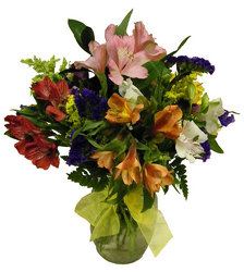 Absolutely Alstro from Ladybug's Flowers & Gifts, local florist in Tulsa