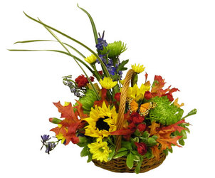 Autumn Fields from Ladybug's Flowers & Gifts, local florist in Tulsa