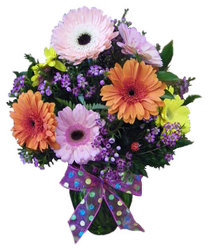 Grand Gerberas from Ladybug's Flowers & Gifts, local florist in Tulsa