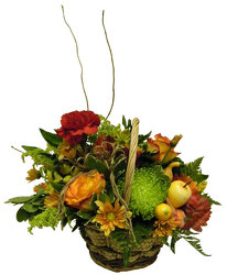 Harvest Basket from Ladybug's Flowers & Gifts, local florist in Tulsa