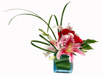 Thrill Me from Ladybug's Flowers & Gifts, local florist in Tulsa