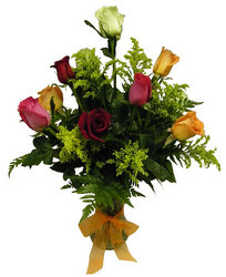 Dozen Mixed Roses Special from Ladybug's Flowers & Gifts, local florist in Tulsa