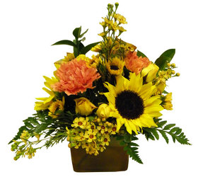 Autumn Glow from Ladybug's Flowers & Gifts, local florist in Tulsa