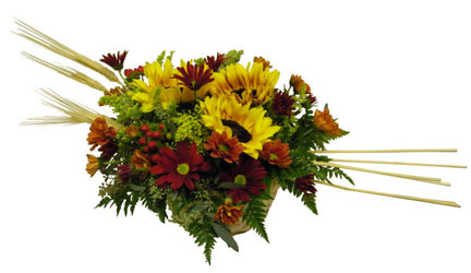 Autumn Sun from Ladybug's Flowers & Gifts, local florist in Tulsa